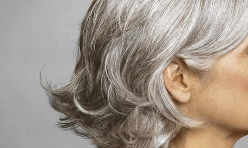 Top 4 Tips To Help you Avoid Getting Gray Hair