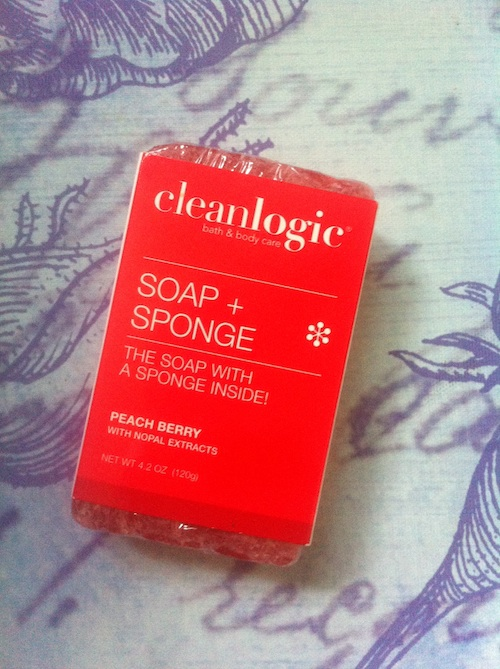 Cleanlogic Soap + Sponge