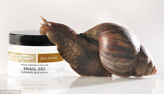 snailcream